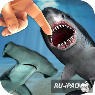Shark Fingers! 3D Interactive Aquarium